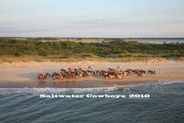 Aerial photograph of Chincoteague Saltwater Cowboys Portrai